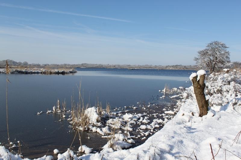 Foto winter 2012-4 Ankeveense plassen